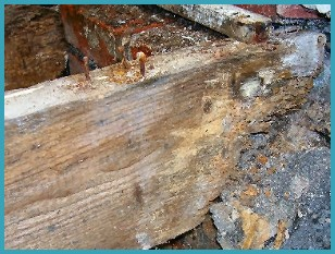Wet rot advice in Carlisle, Cumbria
